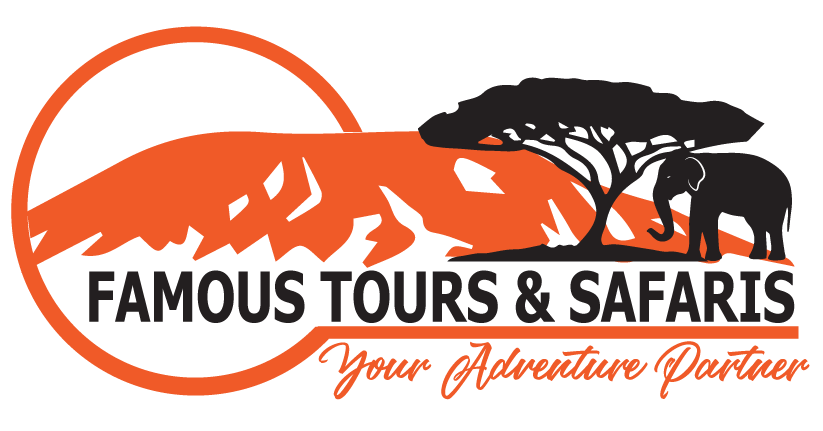 Best Things To Discover In African Safaris - Famous Tours